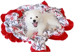 Luxurious Plush Pet Blanket Red Snowflake Full Size